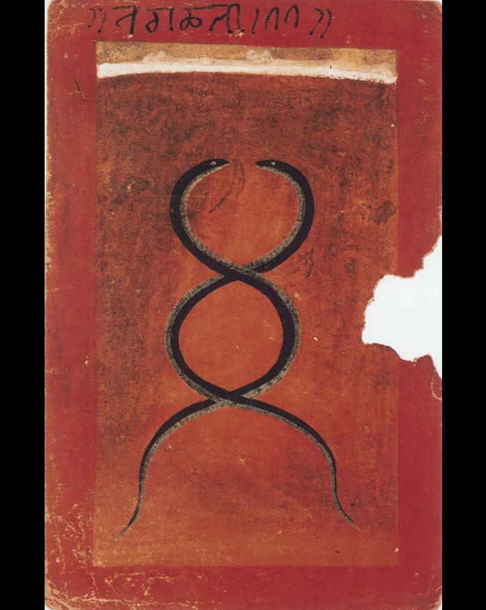 Intertwined Twin Kundalini Serpents